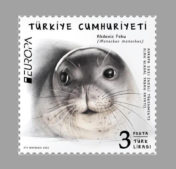 PTT A.Ş., Akdeniz Foklarının Simgesi Olan Fok Badem'in Görselinin Yer Aldığı 'Akdeniz Foku' Başlıklı Pul İle PostEurop'un Düzenlediği Yarışmada Türkiye Adına Yer Alıyor.